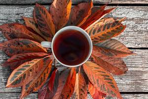 A Cup of tea with autumn leaves on an old wooden background. The view from the top