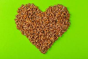 A grain of wheat in shape of heart on green background