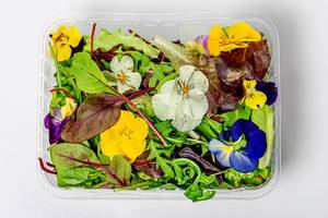 A mixture of different lettuce leaves and edible flowers (Flip 2019)