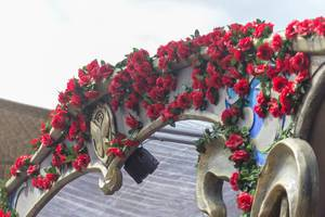 A piece of installation covered by red rose with the Tomorrowland logo on it