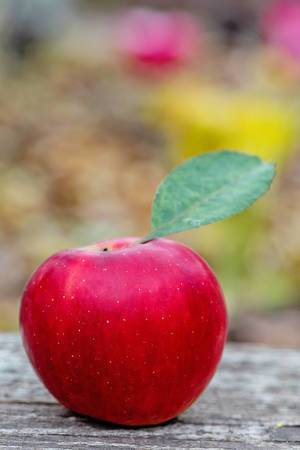 A red apple with the leave attched on a wooden table - close up