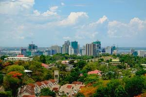A view of metro Cebu from the temple