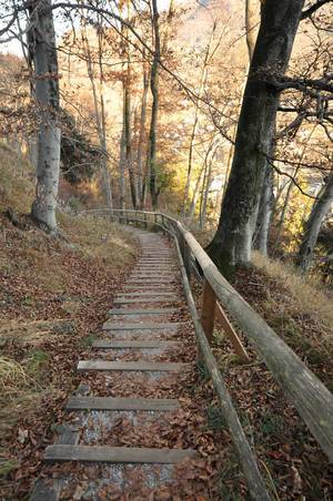 Abstieg vom Kapuzinerberg