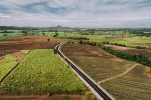 Aerial photo of sugarcane fields in Sagay (Flip 2019)
