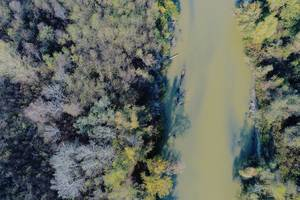 Aerial view of Arges river, trees on both sides of the river, Romania (Flip 2019)