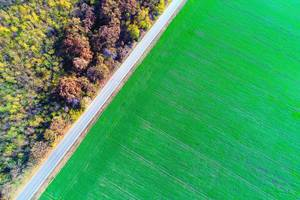 Aerial view over green field and empty road