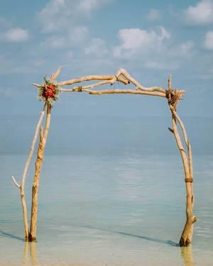 An arc made out of driftwood (Flip 2019)