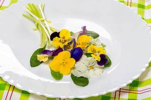An edible bouquet of salad leaves and flowers (Flip 2019)