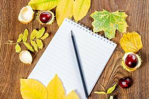 An empty notebook and a black pencil on a brown wooden background with yellow leaves and chestnuts (Flip 2019)