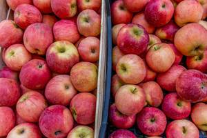 Apples on marketplace