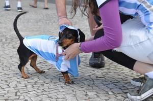 Argentinien-Dackel an der Copacabana