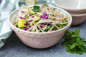 Asiatischer Sprossen-Salat mit Gurke und frischen Kräutern, in einer Schüssel
