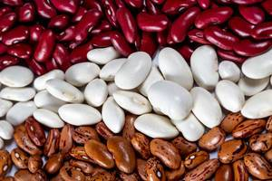 Assortment of beans of different varieties