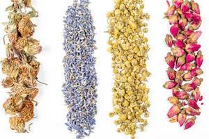 Aufnahme von oben: getrocknete Hibiskus-, Kamillen- und Lavendelblüten vor weißem Hintergrund