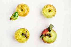 Aufsicht - Vier Äpfel im Viereck auf weißem Hintergrund