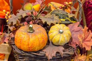 Autumn decoration for Halloween season with pumpkins and colorful leaves