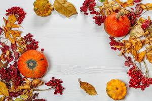 Autumn frame with colorful leaves, pumpkin and viburnum berries on a white wooden background (Flip 2019)
