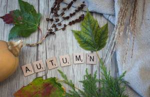 Autumn Letters with leafs in the Background Top View