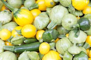 Baby summer squash - City Market, Chicago