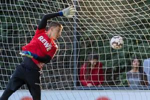 Ball im Tor, berührt das Netz