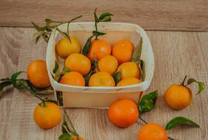 Basket of Tangerines