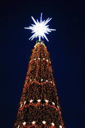 Beleuchteter Weihnachtsbaum mit großem weißem Stern, Nachtaufnahme auf dem Weihnachtsmarkt