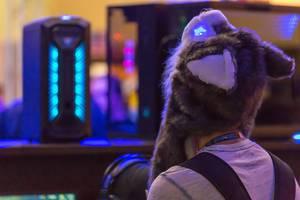 Besucher mit Wolf-Mütze auf der Gamescom 2018