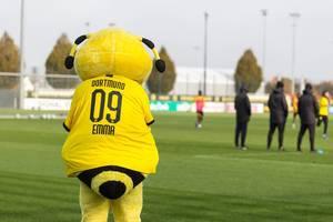 Biene Emma Borussia Dortmund Maskottchen schaut beim Training zu