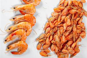 Big king prawns and a bunch of little ones on a light background