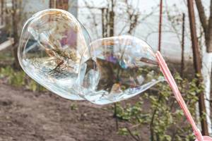 Big soap bubbles are blown out