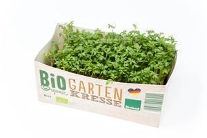 """Bioland Garten Kresse """"Bio Organic"""" aus Deutschland im kleinen Papkarton, isoliert auf weißem Untergrund"""
