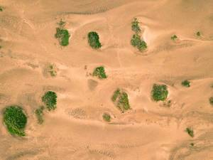 Bird eye view of desert
