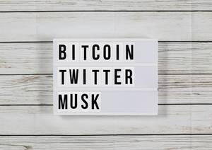 Bitcoin-Betrug auf Twitter mit gefälschten Accounts von Musk
