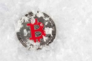 Bitcoin überlebt den Krypto-Winter