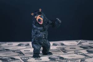 Black bear standing on US dollar banknotes