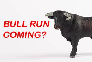 Black bull with text Bull run coming