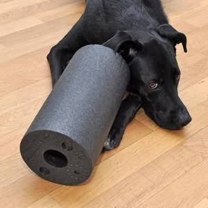Blackroll Friday ? #blackfriday #blackroll #labrador #lab #laboftheday #labsofinstagram #sports #fitness #training