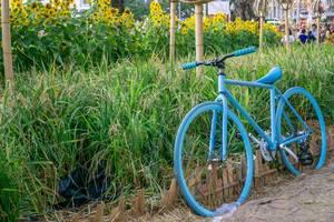 Blaues Fahrrad vor Sonnenblumenfeld in Flower Street 2019 Ho Chi Minh City, Süd-Vietnam