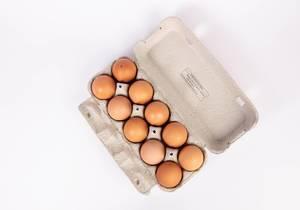 Blick von oben auf mit braunen Eiern gefüllten Eierkarton vor weißem Hintergrund