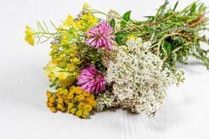 Blumenstrauß von Wildblumen auf weißem Holzhintergrund