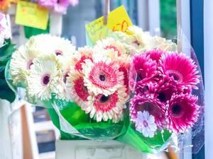 Blumensträuße in einem Blumenladen in Köln
