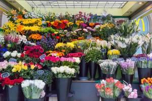 Blumensträuße und Blumen in einem Blumengeschäft in London
