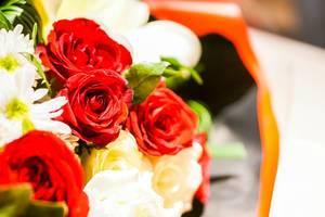 Bokeh shot of a red rose (Flip 2019)
