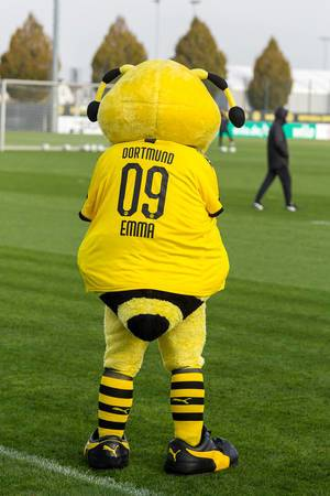 Borussia Dortmund mascot bee Emma watches the public training