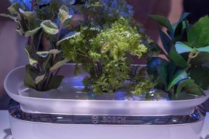 Bosch SmartGrow device for indoor gardening with automatic watering and lighting