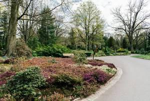Botanic garden overview (Flip 2019)
