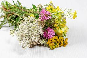 Bouquet of wildflowers on a white wooden background (Flip 2019)
