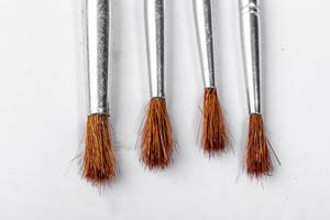Brushes for paints on white