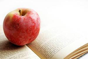 Buch mit Apfel (engl. A Book and An Apple)