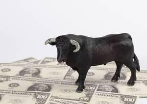 Bull standing on money